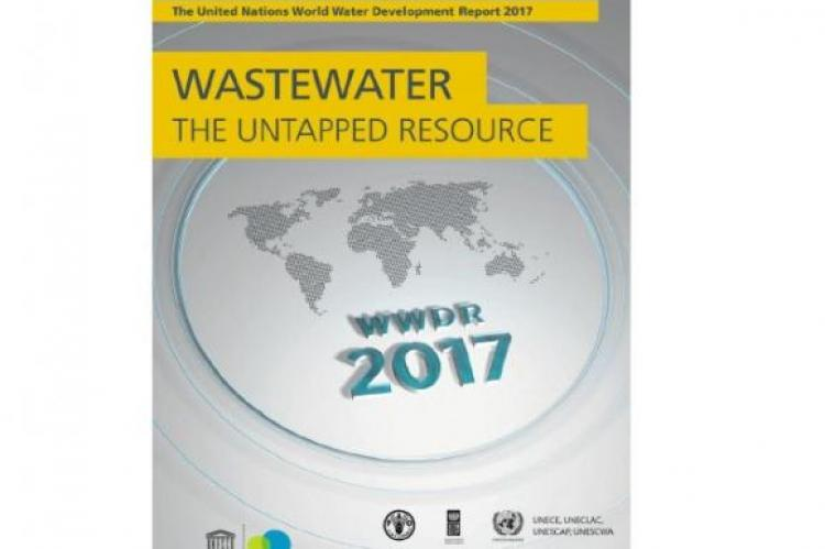 The United Nations World Water Development Report 2017