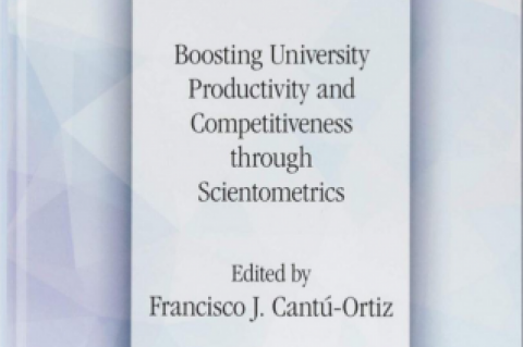 An Ardent Venture to Evaluate University-Level Research Productivity through the Lens of Scientometrics