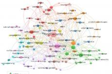 Co-occurrence of author keywords