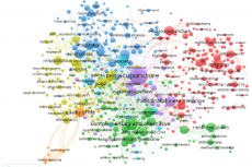 Network visualization based on author keywords in journal articles classified as Complementary Therapies in Medline, 1966-2016